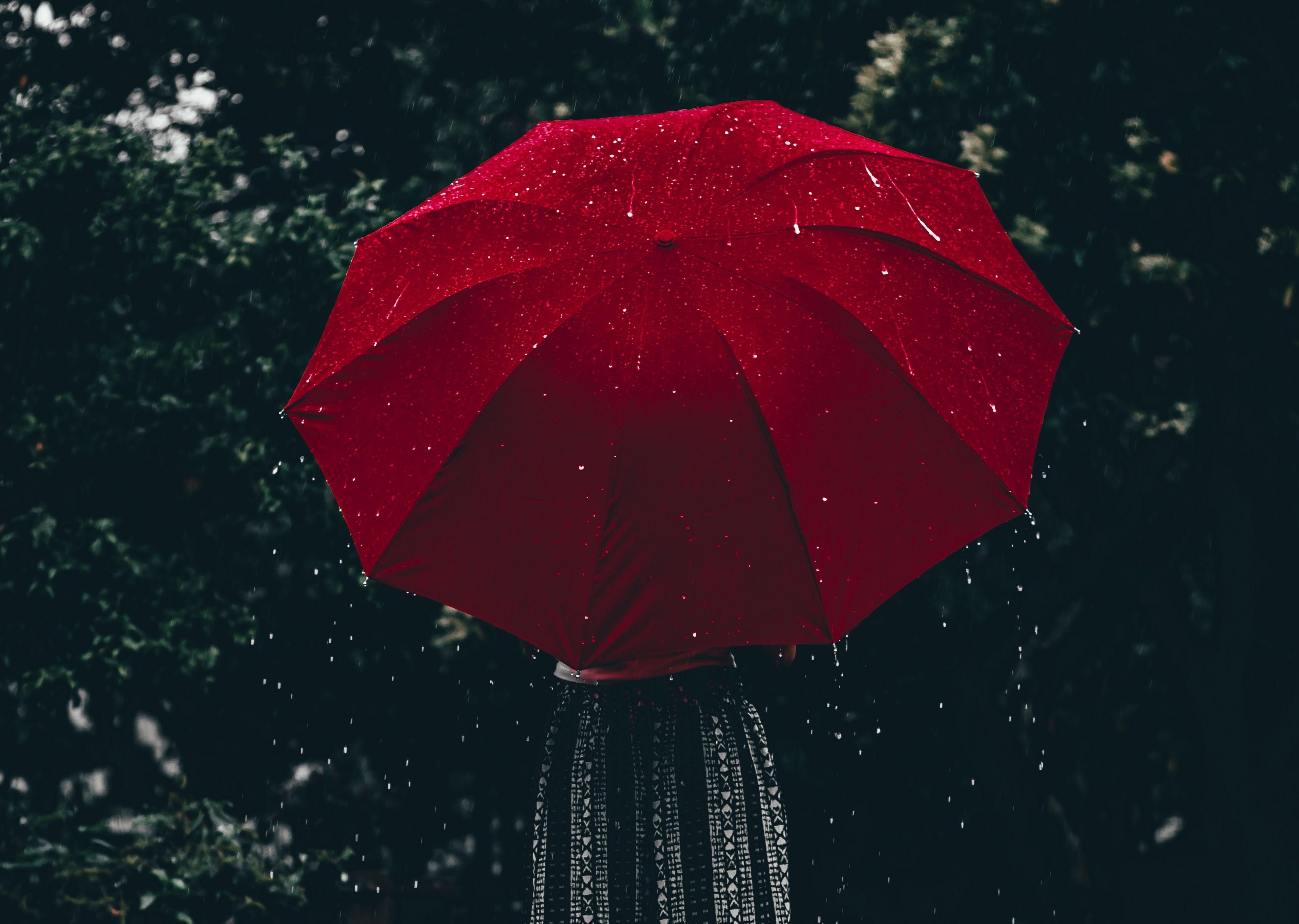 Ilustrasi musim hujan/Pexels/Aline Nadai