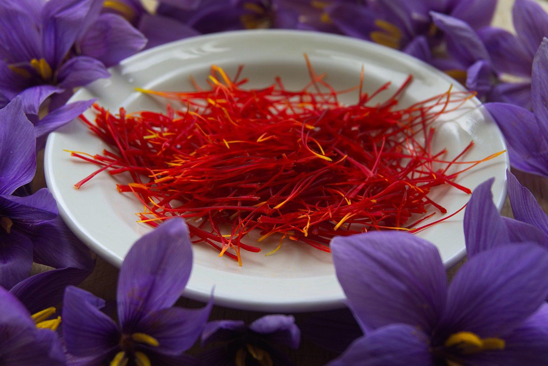 Jutaan Manfaat dari Rempah Saffron untuk Kesehatan Tubuh