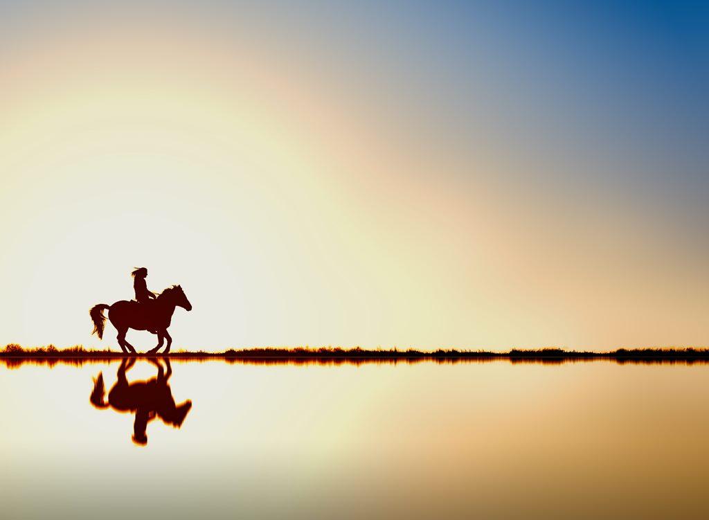 4 Hewan yang Ditunggangi Rasul saat Berdakwah, Berperang maupun Berdagang