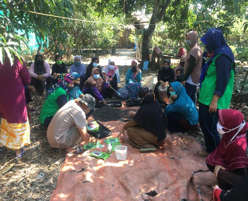 Kelompok Wanita Tani (KWT) Desa Karyamukti menjalankan gerakan rumah pangan asri (Foto: Ist)